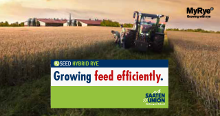 Growing feed efficiently
